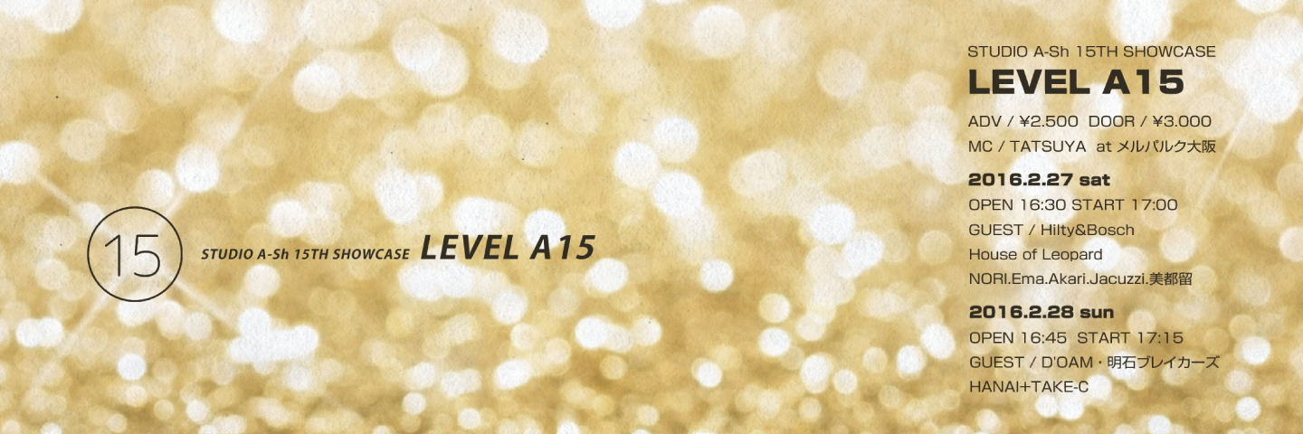 LEVEL A15